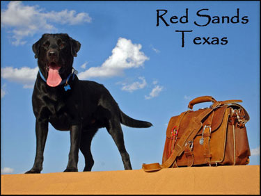 Red Sands Texas dog Blue Saddleback Leather